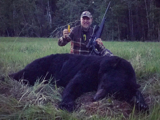 trophy black bear hunting